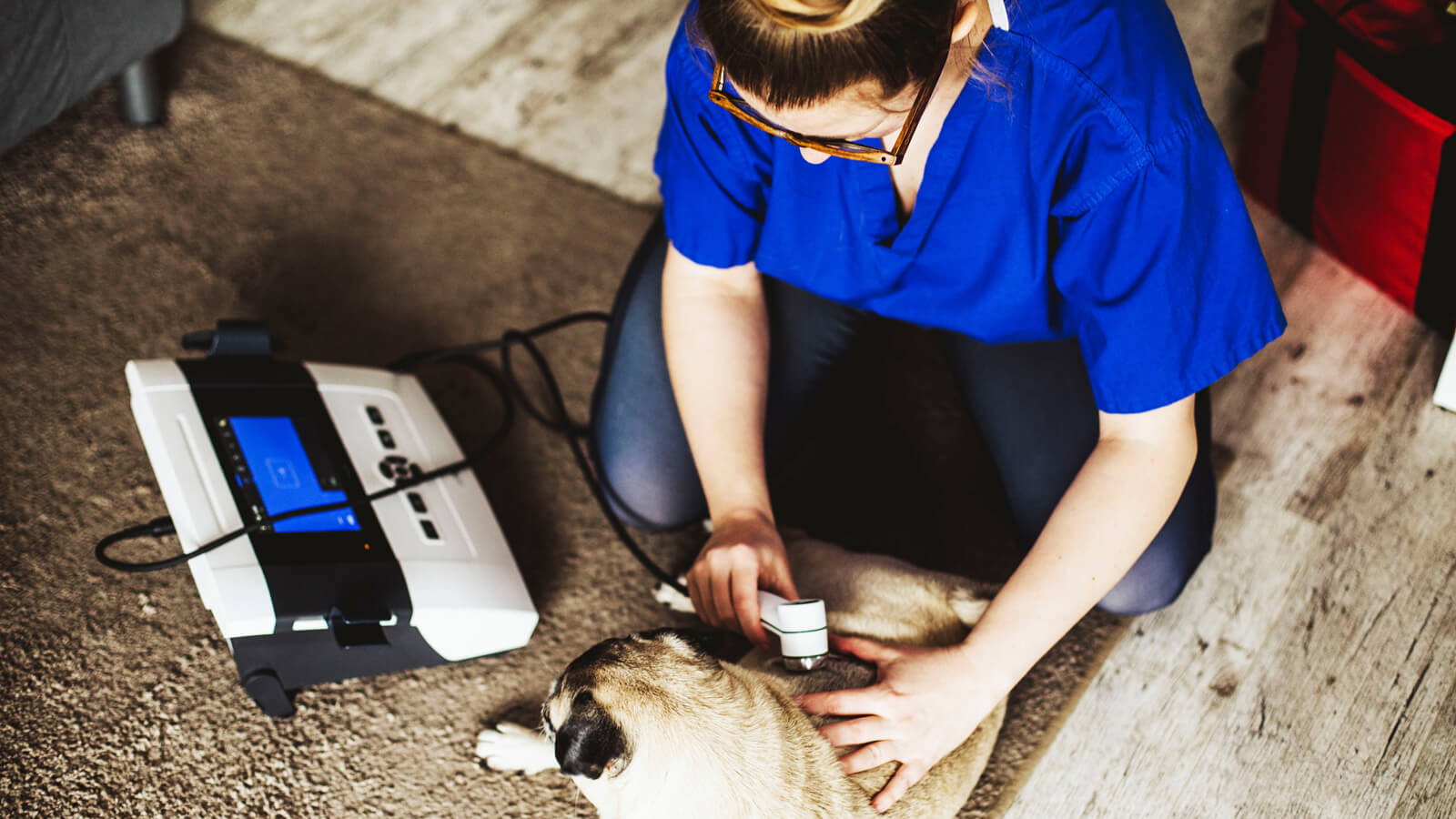 Agata uses laser therapy in the physical rehabilitation process.